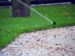 Sprinkler watering lawn in Autumn
