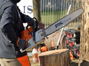 Man with Stihl power tool chainsaw