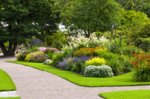 Beautiful summer edged garden