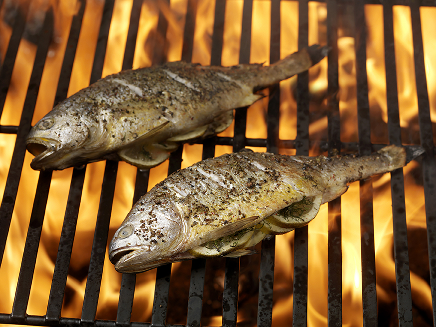 Cooking fish on outdoor kitchen grill